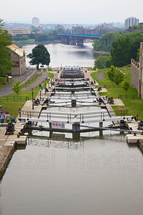 MG 3929 