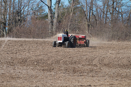 MG 5968 
